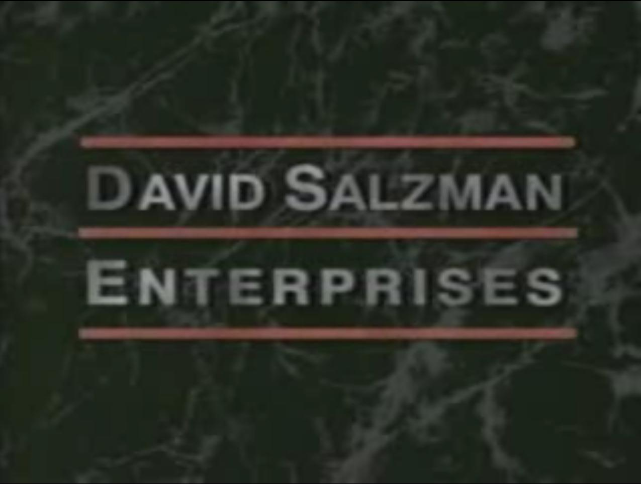 David Salzman Enterprises (1991)